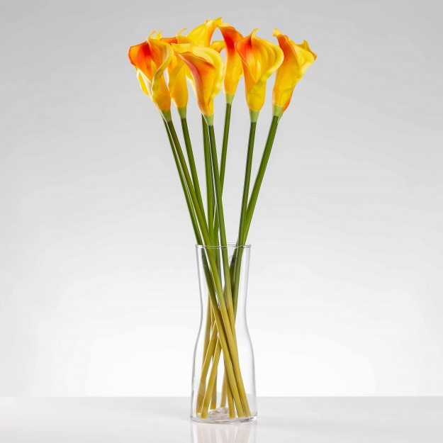 Luxury calla Alena