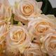 Umělá růže Růžena šampanská. Cena uvedena za 1 kus.