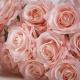 Umělá růže Růžena světle - růžová. Cena uvedena za 1 kus.