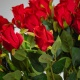 Gyönyörű selyem rózsa ERIKA