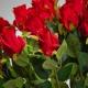 Beautiful silk rose ERIKA