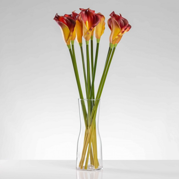 The Luxury Calla ALENA