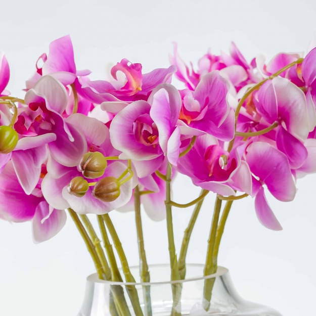 Umelá orchidea SILVIA bielo-purpurová. Cena uvedená za 1 kus.