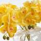 Umelá orchidea NATÁLIA žltá. Cena uvedená za 1 kus.
