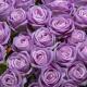 Umelá zamatová ruža ANNA fialová. Cena uvedená za 1 kus.