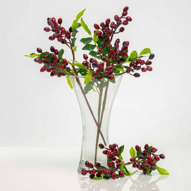 Twig with berries DANA