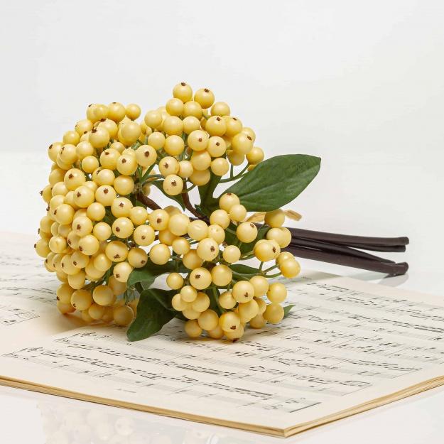 Csokor bogyókból IRMA fehér-krémszínű.