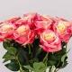 Umelá ruža SIMONA žlto-ružová. Cena uvedená za 1 kus.
